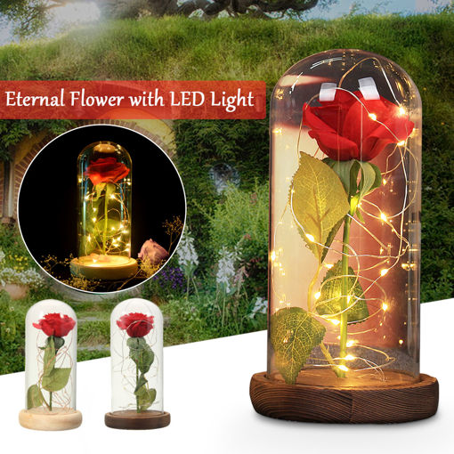 Immagine di Red Rose Lights Decorations Beauty Enchanted Preserved Red Fresh Rose Glass Cover with LED Light